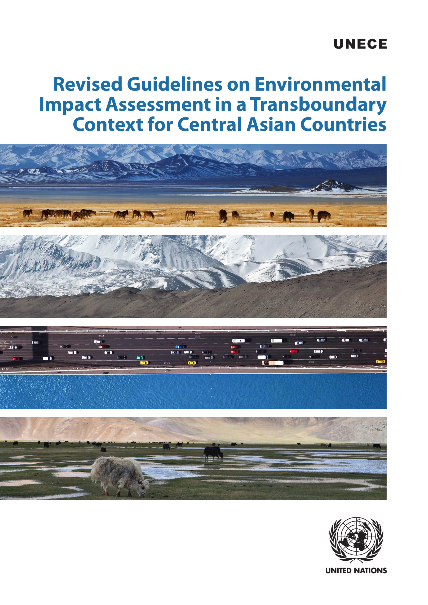 Revised Guidelines on Environmental Impact Assessment in a Transboundary Context for Central Asian Countries
